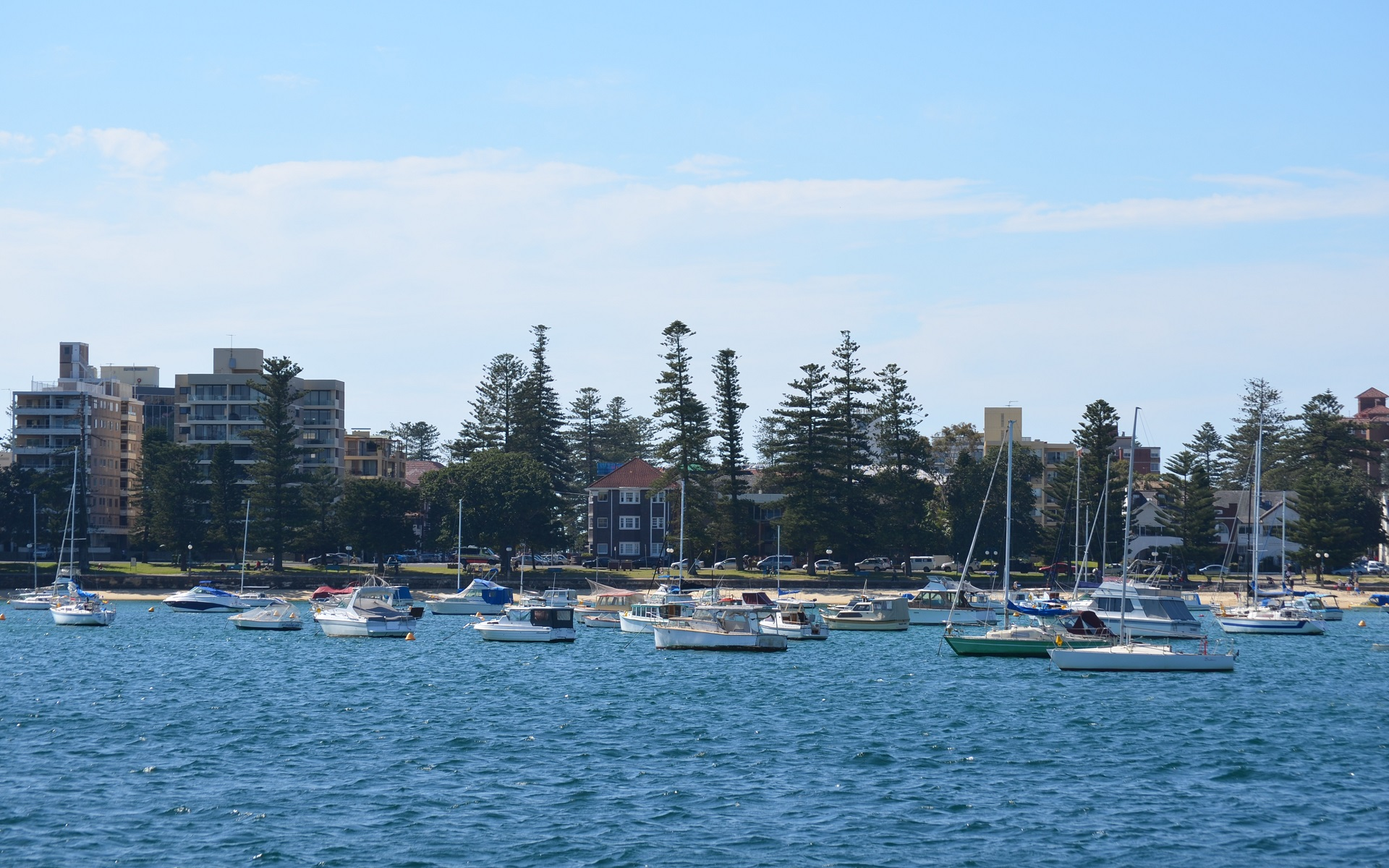 manly sydney australia full hd wallpaper and background