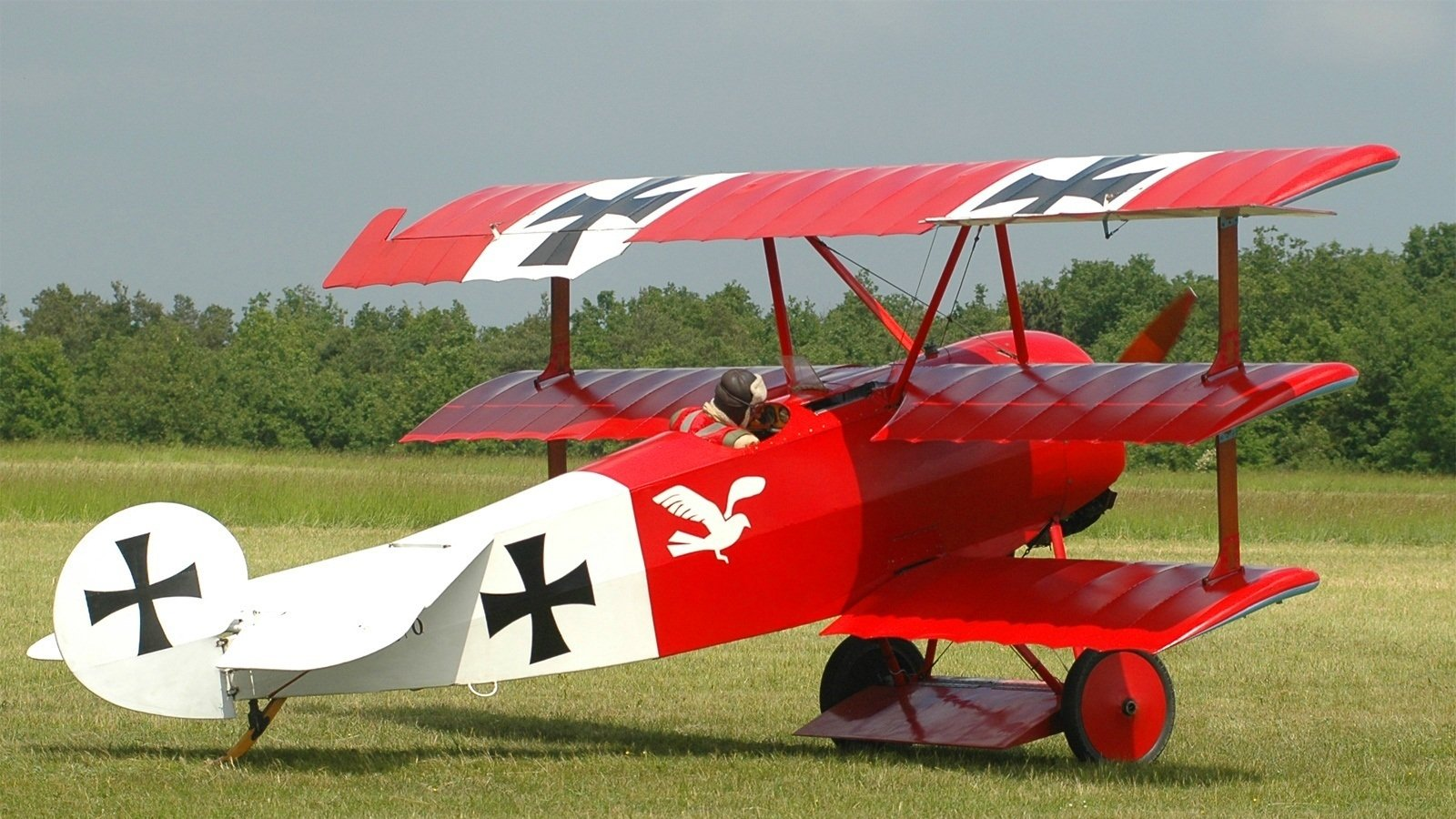 Vehicles - Fokker Dr1  Airplane Wallpaper
