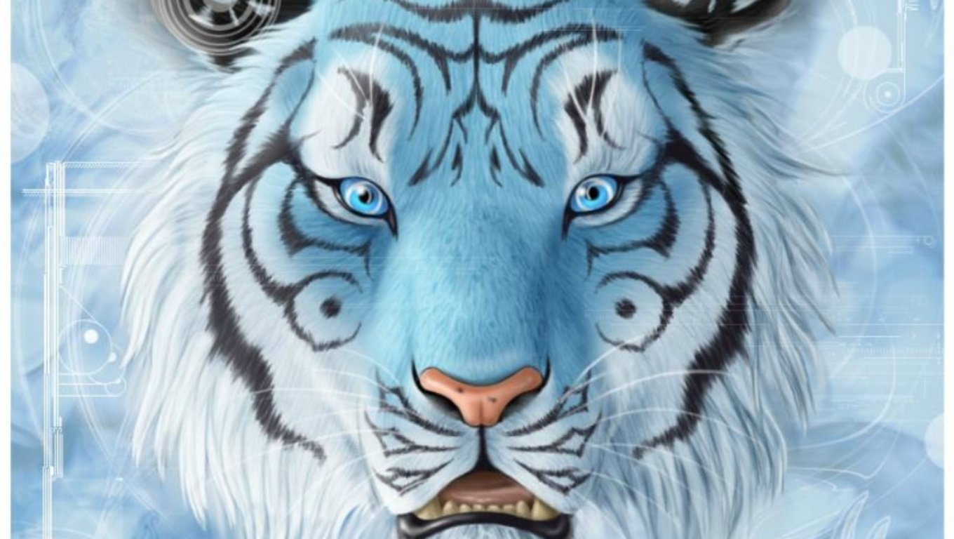Tiger Wallpaper and Background Image | 1360x768 | ID ...