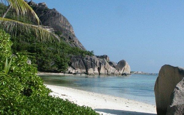 Tierra/Naturaleza Playa Rock Árbol Palmera Planta Montaña Seychelles Fondo de pantalla HD | Fondo de Escritorio