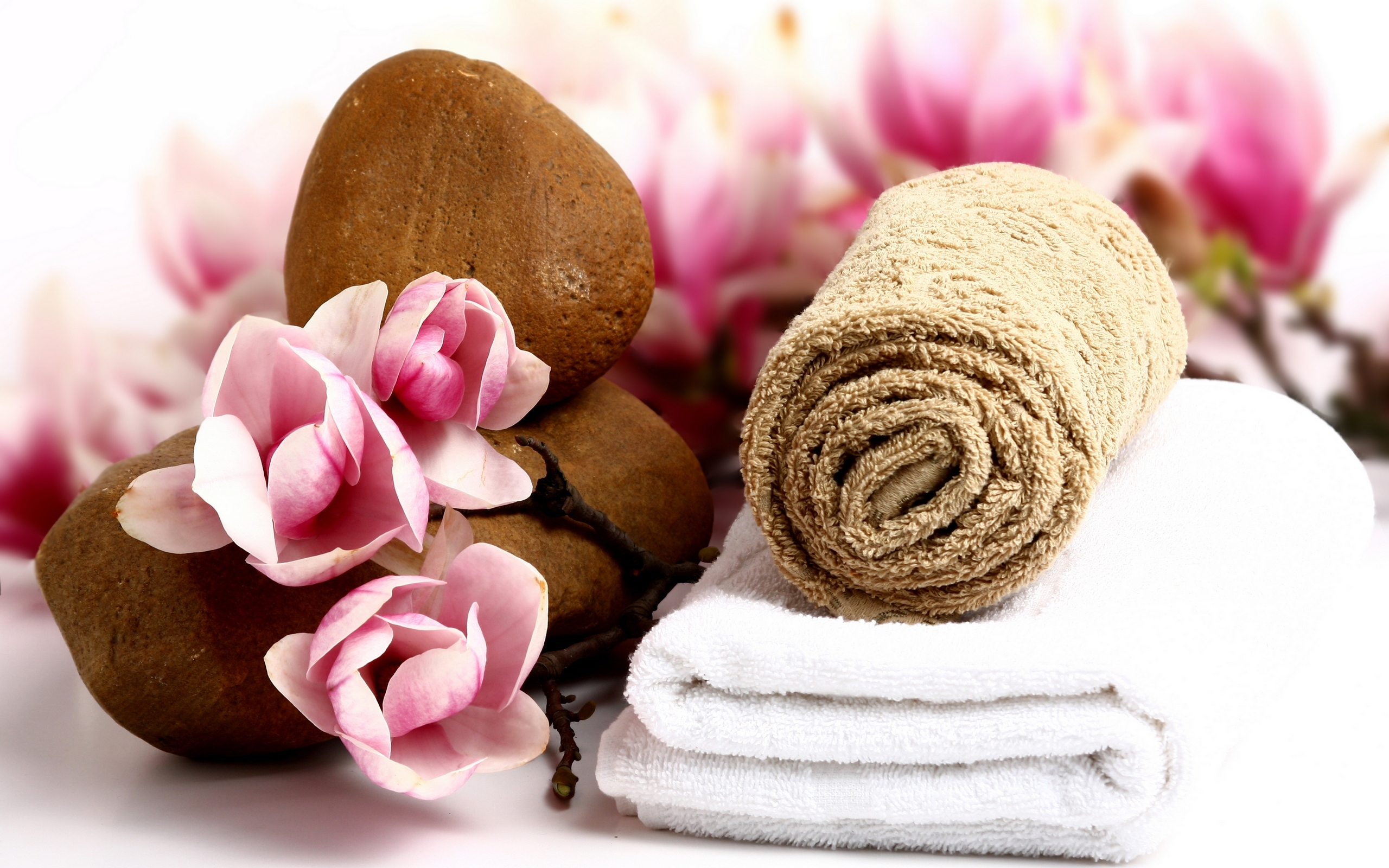 Spa full hd wallpaper and background image 2560x1600 for Salon wallpaper