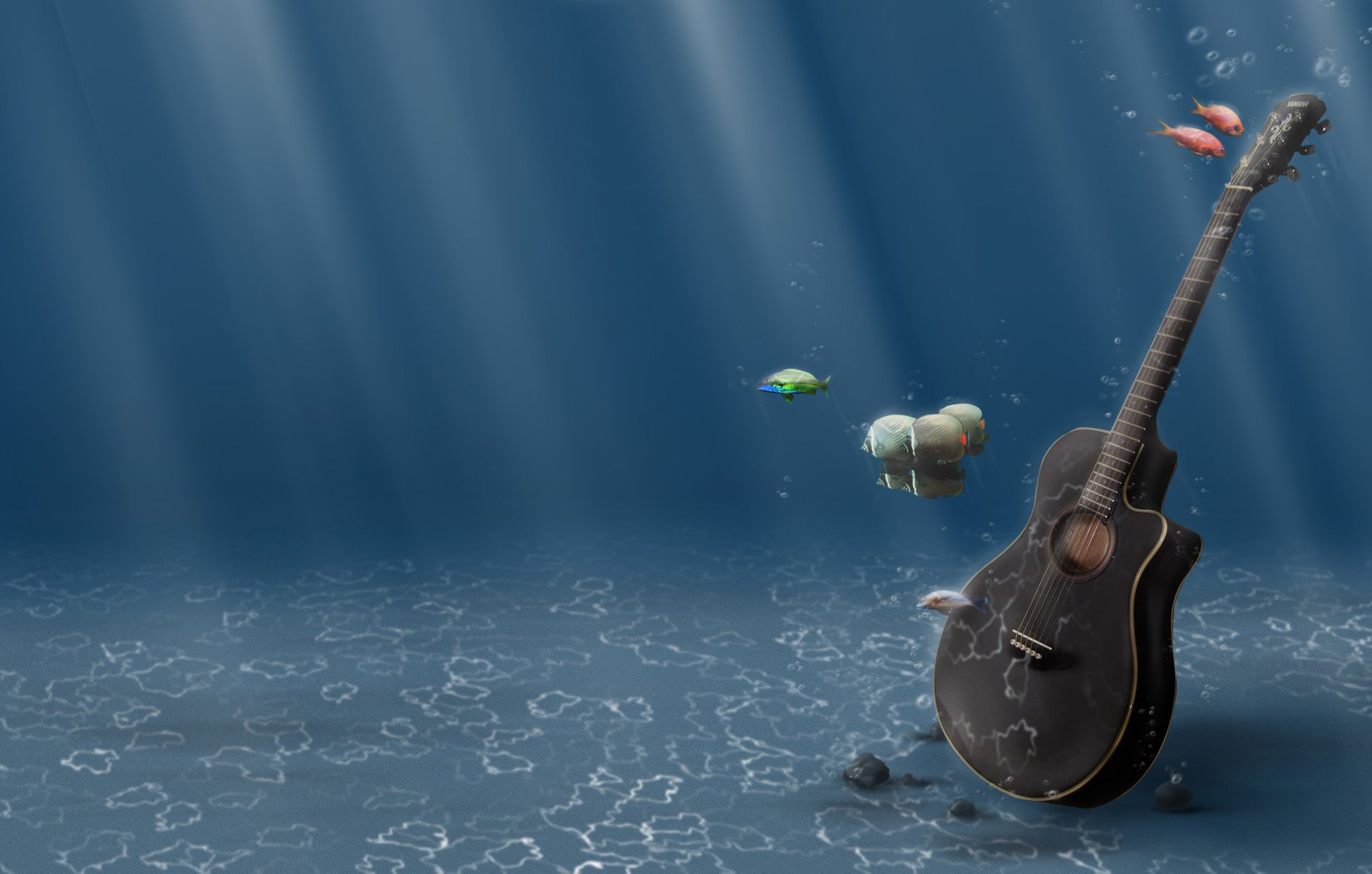 Music - Guitar  Fish Wallpaper