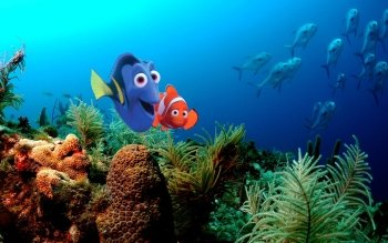 Filme - Findet Nemo Wallpapers and Backgrounds ID : 453148