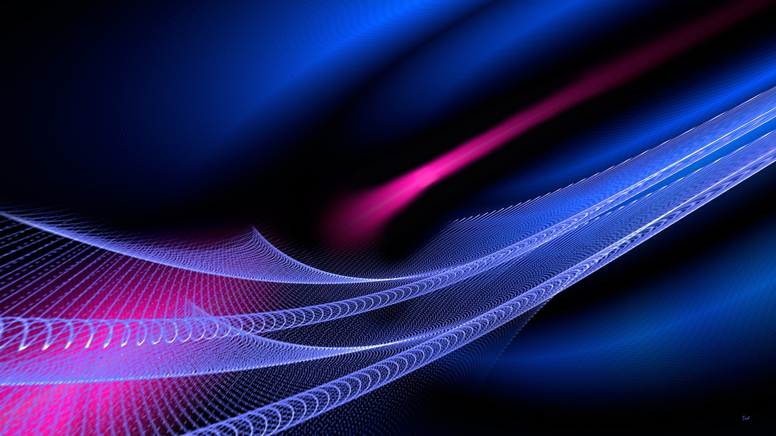Vector HD Wallpaper | Background Image | 2560x1440 | ID ...