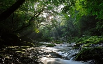 Earth - Stream Wallpapers and Backgrounds ID : 462974