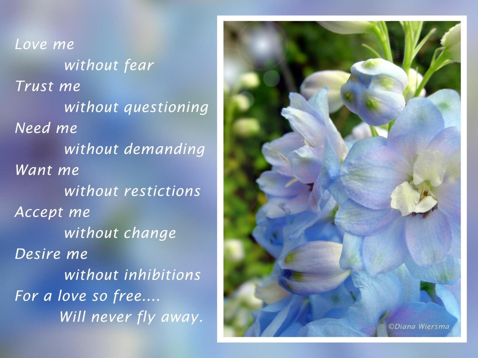 Artistic - Love  Artistic Flower Statement Wallpaper
