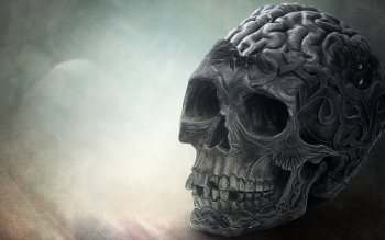 Dark - Skull Wallpapers and Backgrounds ID : 463119