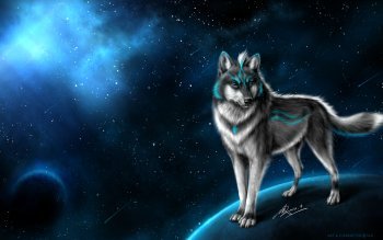 Animal - Wolf Wallpapers and Backgrounds ID : 463422