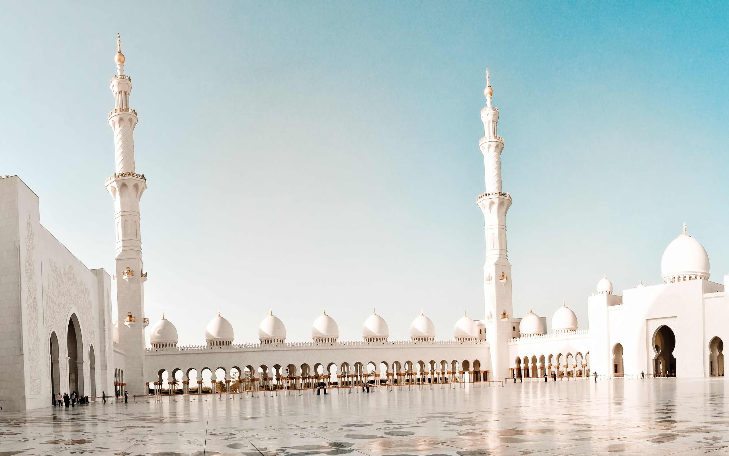 Mosque Full Hd Wallpaper And Background Image 2560x1600