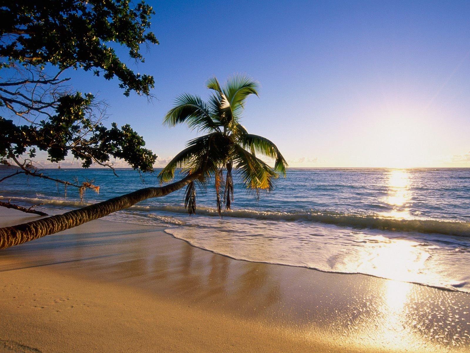 Tierra/Naturaleza - Playa  Tierra/Naturaleza Océano Atardecer Fondo de Pantalla