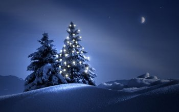 Holiday - Christmas Wallpapers and Backgrounds ID : 469942