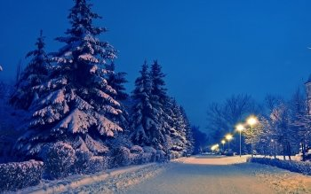 Fotografía - Winter Wallpapers and Backgrounds ID : 470626