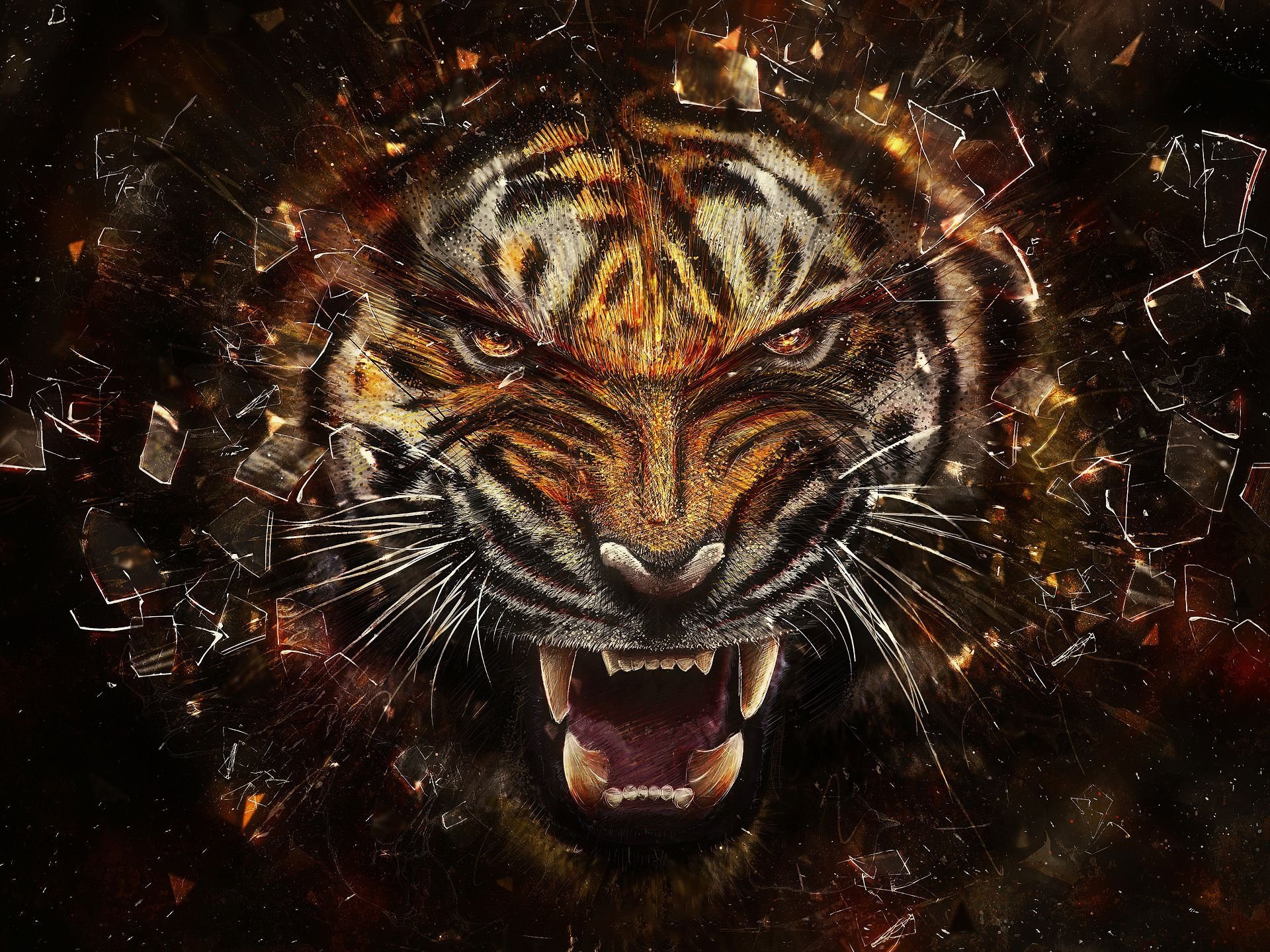 tiger full hd wallpaper and background image | 1920x1440 | id:472563