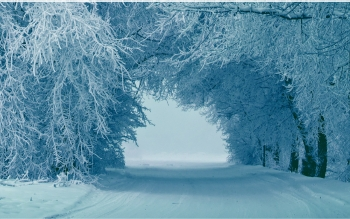 Erde - Winter Wallpapers and Backgrounds ID : 472596