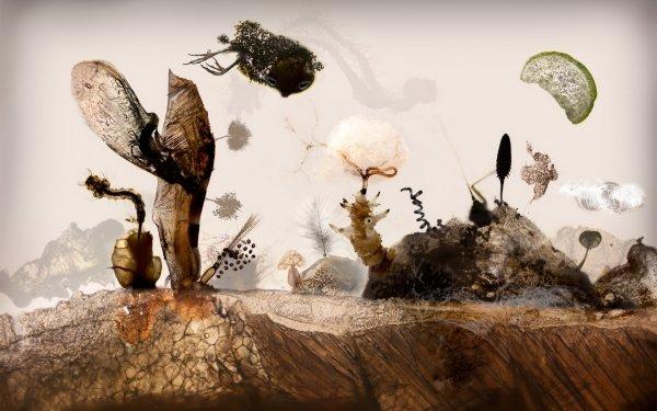 Fantasy Artistic Life Earth HD Wallpaper | Background Image