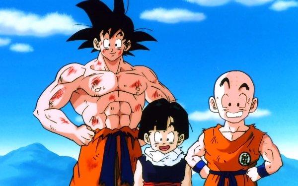 Anime Dragon Ball Z Dragon Ball Goku Gohan Krillin HD Wallpaper   Background Image