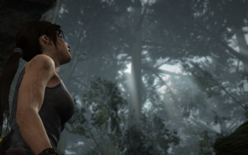 Video Game - Tomb Raider Wallpapers and Backgrounds ID : 475352