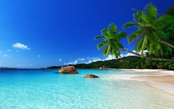 Earth - Tropical Island Wallpapers and Backgrounds ID : 475967