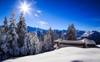 Photography - Winter Wallpapers and Backgrounds ID : 476278