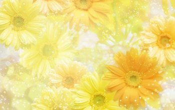 Artistic - Flower Wallpapers and Backgrounds ID : 477723