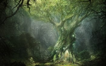 Fantasy - Forest Wallpapers and Backgrounds ID : 478476