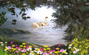 Animal - Swan Wallpapers and Backgrounds ID : 481919