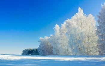 Earth - Winter Wallpapers and Backgrounds ID : 483193