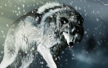 Animal - Wolf Wallpapers and Backgrounds ID : 483558