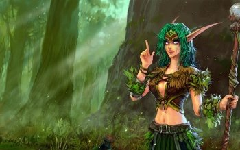Компьютерная игра - World Of Warcraft Wallpapers and Backgrounds ID : 489431