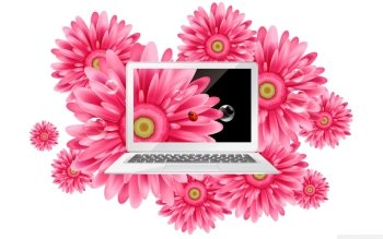 Technology - Laptop Wallpapers and Backgrounds ID : 490197