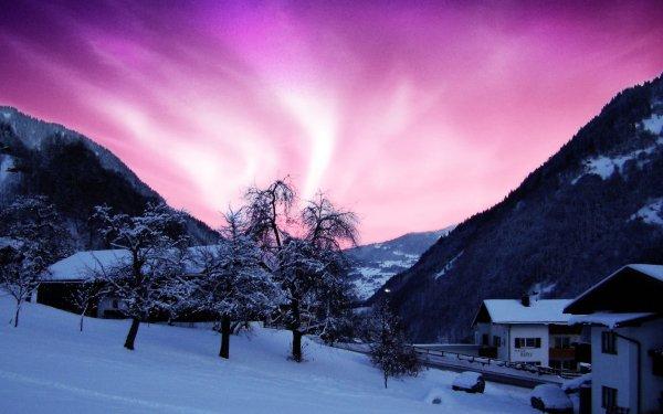 Photography Winter Aurora Borealis Light Night Sky Mountain Tree HD Wallpaper | Background Image