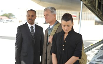 TV-program - NCIS Wallpapers and Backgrounds ID : 491756
