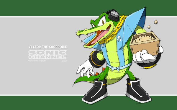 Video Game Sonic the Hedgehog Sonic Vector the Crocodile Sonic Channel HD Wallpaper   Background Image