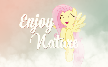 73 Fluttershy My Little Pony HD Wallpapers