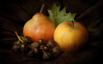 Alimento - Fruit Wallpapers and Backgrounds ID : 496308