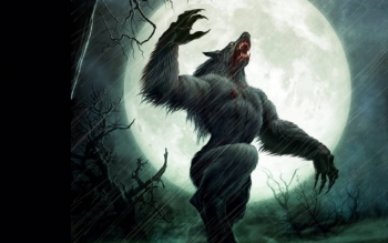 Dark - Werewolf Wallpapers and Backgrounds ID : 497742