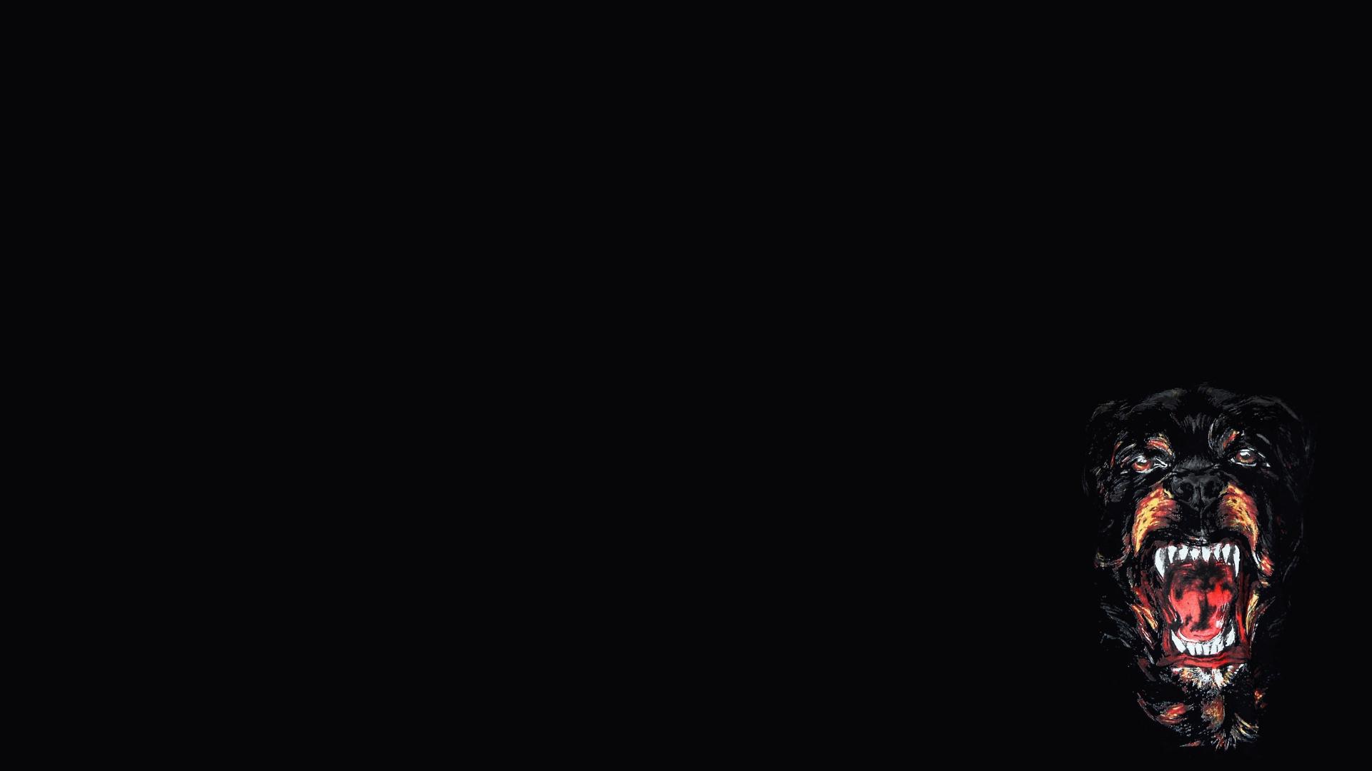 Rottweiler HD Wallpaper