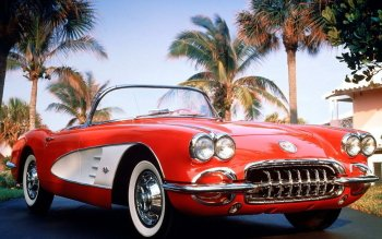 Vehicles - Chevrolet Corvette Wallpapers and Backgrounds ID : 498366