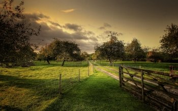 Man Made - Fence Wallpapers and Backgrounds ID : 499881