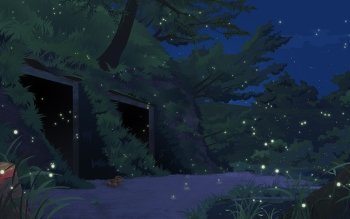 14 Grave Of The Fireflies Hd Wallpapers Background Images