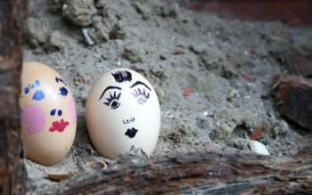 Humor - Egg Couple Wallpapers and Backgrounds ID : 500690