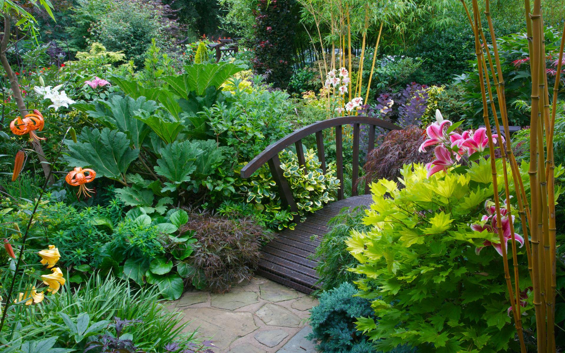 Garden fonds d 39 cran arri res plan 1920x1200 id 513035 for Jardin japonais fond d ecran