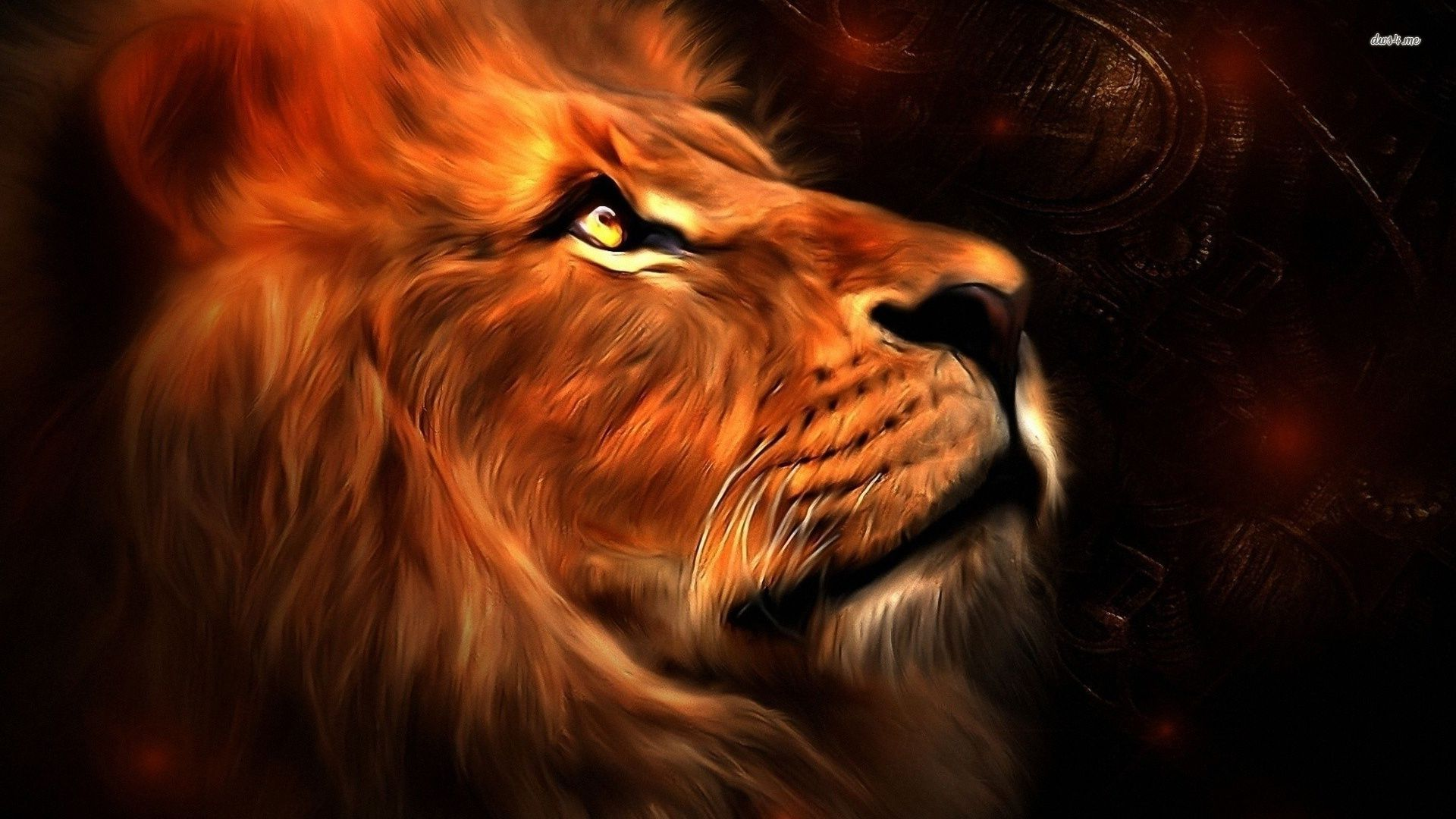 Lion Hd Wallpaper Background Image 1920x1080 Id 515528