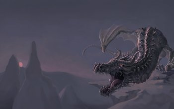 Fantasy - Dragon Wallpapers and Backgrounds ID : 517947