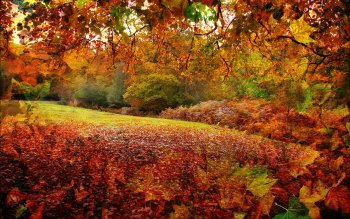 Earth - Autumn Wallpapers and Backgrounds ID : 518522