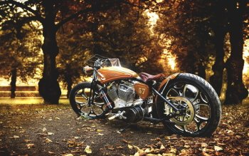 Vehicles - Harley-Davidson Wallpapers and Backgrounds ID : 523577