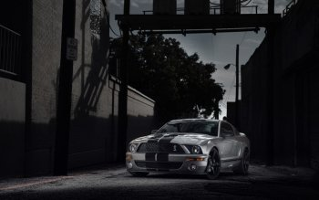 Vehicles - Ford Mustang Shelby Wallpapers and Backgrounds ID : 523824