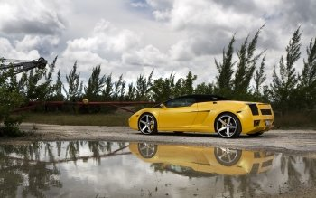 Vehicles - Lamborghini Gallardo Wallpapers and Backgrounds ID : 523941