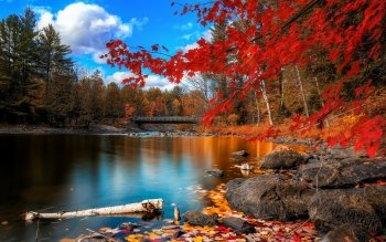 Earth - Autumn Wallpapers and Backgrounds ID : 526233