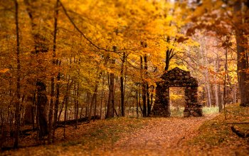 Earth - Autumn Wallpapers and Backgrounds ID : 526360